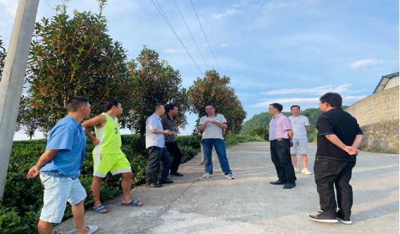 省农业农村厅到凤冈县检查茶叶有机肥替代化肥试点县项目